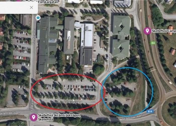 Skebo bygger tillfälliga studentrum på Campus